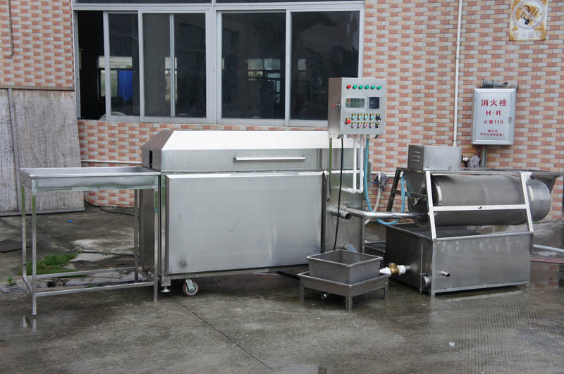 fish descaling machine