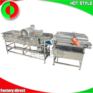 Commercial ozone vegetable and fruit cleaning line equipment